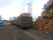 Предлагает к продаже лес - кругляк из России регионов Сибири-